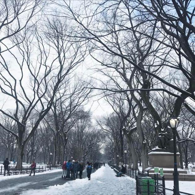 central-park-avenue